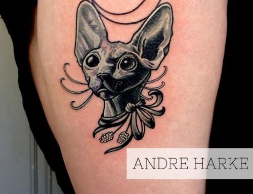 Andre Harke