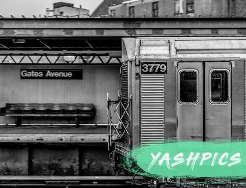 Yashpics
